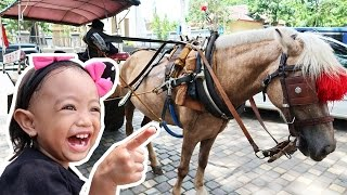 Download Video Naik Delman Istimewa ❤ Lagu Anak Populer MP3 3GP MP4
