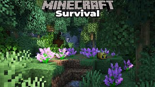 Minecraft 1.15 Survival : Building with fWhip : WORLD TOUR FINAL PREPARATIONS