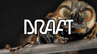 Download Lagu Sonic Academy - Interview - Draft Mp3