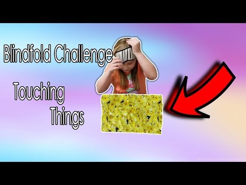 Blindfold Challenge - Touching Things - The Bennett Pack