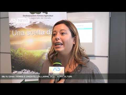08/11/2019 | TERRA E CREDITO, L'ALLARME DEGLI AGRICOLTORI
