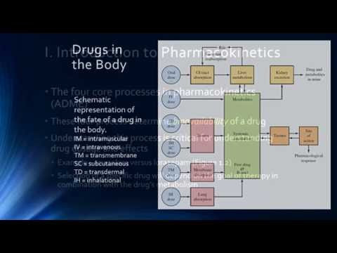 Psychopharmacology & Pharmacokinetics