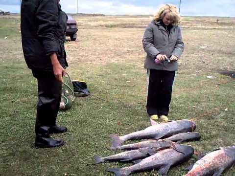 видео рыбалка в луганской области видео
