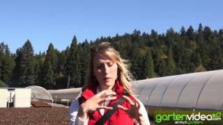 #890 BrazelBerries - Neue Heidelbeersorten von Fall Creek Nursery