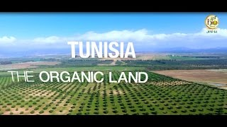 Tunisia is becoming a major player in the global organic sector. The country is actually the world leading exporter of several organic products such as olive oil, ...