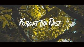 Download Lagu Alan Walker ft. Bebe Rexha - Forget The Past Mp3