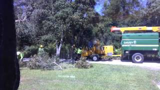 Catching Davey Tree Service, contracted by Duke Energy, illega...