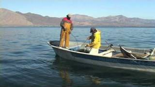 http://www.johnduttonmedia.com: When the small Mexican fishing village of Bahia de Los Angeles is threatened by economic...