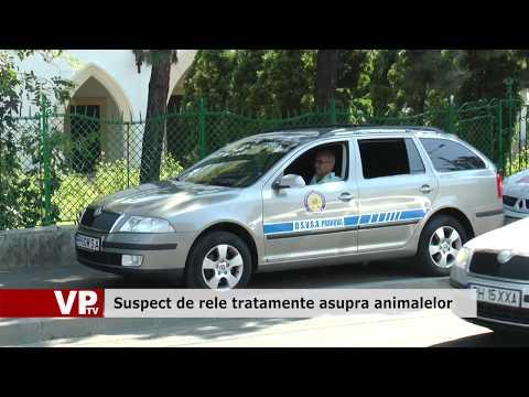 Suspect de rele tratamente asupra animalelor