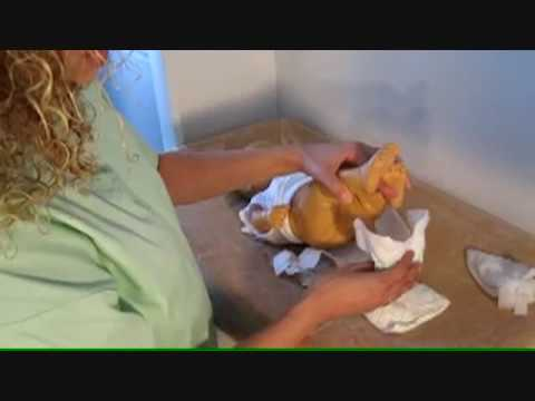 How to Change a Baby's Diaper – Newborn Care Tips