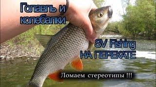 Голавль на колебалки SV Fishing