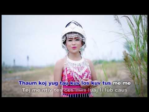 Dalee Chang-Nco Niam Txiaj Ntsig (видео)