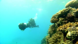 Google+: Catlin Seaview Survey Underwater Hangouts On Air