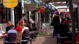 Hamilton New Zealand  city photo : Hamilton, New Zealand