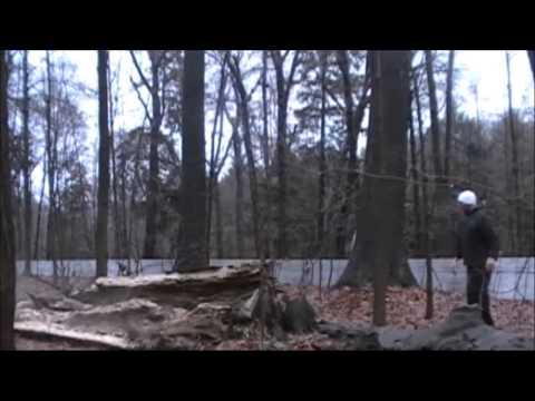 ELPRESADOR - ELPRESADOR TREE MONTAGE CAMPERS BEAST BLOOD ELBEASTADOR BIBLICAL TREE TACKLE.