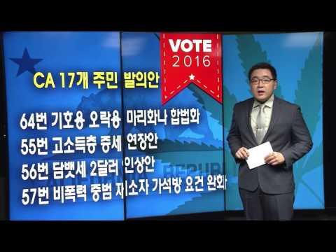 [대선특보]'마리화나 합법화' 주민 발의안 11.8.16 KBS America News