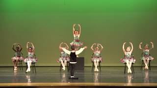 Dance Theater of New England 2018 Recital