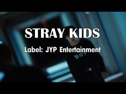 Video STRAY KIDS | Members Profile | Hellevator MV download in MP3, 3GP, MP4, WEBM, AVI, FLV January 2017