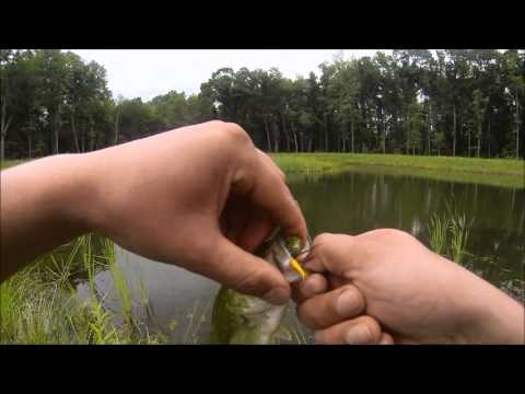 Small Pond Fly Fishing