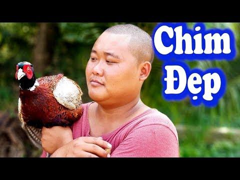 Chim Trĩ Bó Mía Ẩm Thực Độc Lạ   Món Ăn Siêu Lâu   Sơn Dược Vlogs #85 - Thời lượng: 14 phút.