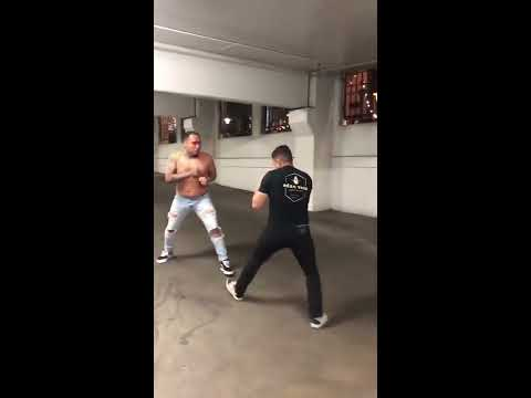 Picked The Wrong One: 2 Gangsters Get Messed Up By A Trained Fighter