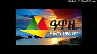 Alemneh Wasse - የአቶ ነጋ ዘሩን ቃለ ምልልስ አስመልክቶ
