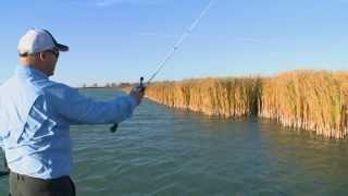 Video Wacky Rigging Fall Bass - Bob Izumi Real Fishing Show MP3, 3GP, MP4, WEBM, AVI, FLV Januari 2019