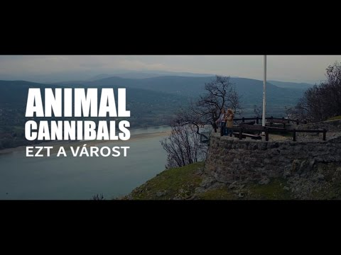 Animal Cannibals - Ezt a várost