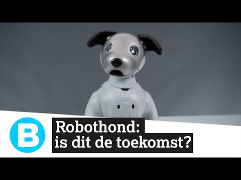 Aibo, robotdog, experience
