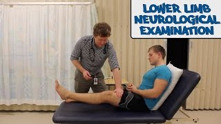 Lower Limb Neurological Examination - OSCE Guide