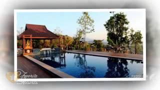 Mae Salong (Chiang Rai) Thailand  City pictures : Rai Kaset Phu Praewa Chiang Rai - Thailand Mae Salong Nai