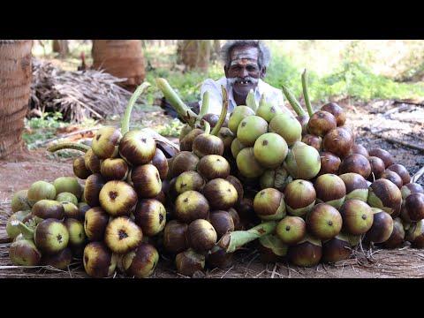 SUMMER DRINK !!! 1500 Palm Fruit Sarbath prepared by my Daddy ARUMUGAM / Village food factory