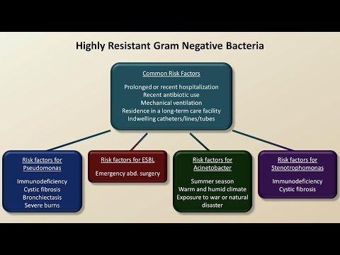 Antibiotics for Gram Negative Infections (Antibiotics - Lecture 5)