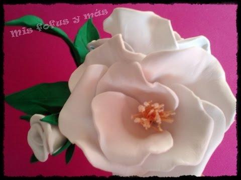 foamy - bellissima rosa che sembra vera