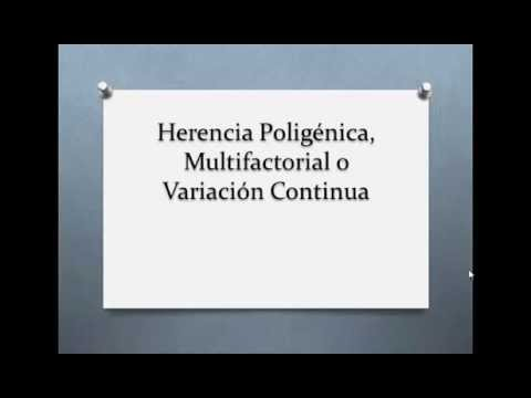 herencia poligenica}