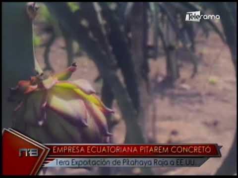 Empresa ecuatoriana Pitarem concretó 1era exportación de pitahaya roja a EE.UU.