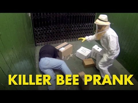 殺人蜂養蜂人在貨梯內不小心把養蜂箱打翻在電梯內!你一定要看看同電梯內的人的反應!