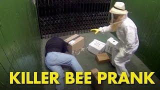 Zabójczy atak pszczół w windzie