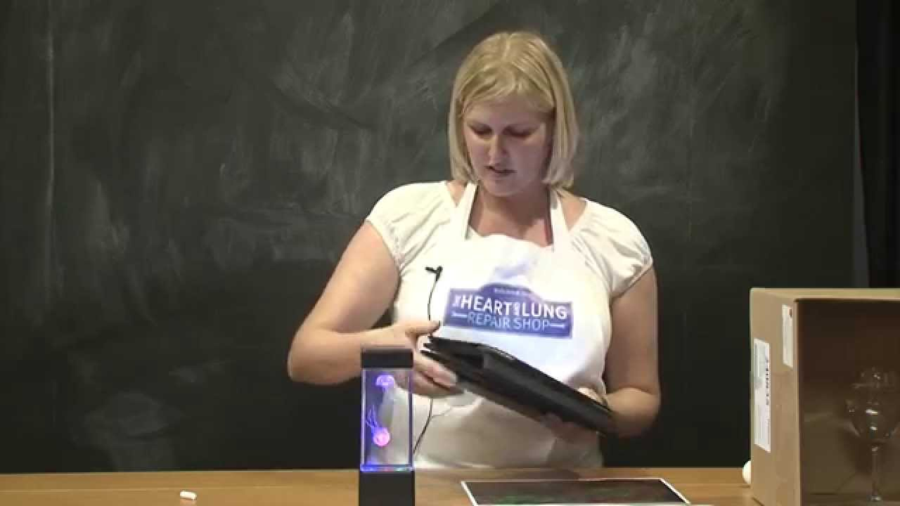 Shop demo - What do jelly fish and tonic water have in common? by Nicola Hellen