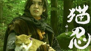 映画『猫忍』特報