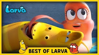 Larva brings you the best of the Larva Episodes for week 27 of 2017. Tune in and join red and yellow on their wild adventures.⏩⏩⏩ SUBSCRIBE to LARVA: http://www.youtube.com/channel/UCph-WGR0oCbJDpaWmNHb5zg?sub_confirmation=1🐌 SEASON 1 - Storm Drain 🐌Red and Yellow, two strange Larva who live underneath a storm drain, encounter many surprises which fall from the outside world to their underground universe. For these two wriggly friends, anything is a good excuse for fun. See the world from Red and Yellow's point of view, and experience what a dangerous and exciting place the world can be for such small friends.🐌 SEASON 2 - HOUSE 🐌Eager to explore the world above, Red & Yellow squat in an old house stuck between high-rise buildings in the big city. Exploring their new home and meeting new creatures means more laughs for the comic duo. Sometimes they fight. Sometimes they find themselves in trouble together. A story of two cute and hilarious larva.🐌 SEASON 3 - NEW YORK 🐌Now it's the New York City. Watch Red and Yellow's incredible abilities while they explore the city. A whole new adventure in a bigger scale! The exciting survival story of two little Larva in New York.🐌 THE CHARACTERS 🐌💛 Yellow 💛 Yellow is a dimwitted and happy-go-lucky yellow colored larva with an antenna. Yellow is always abused by Red, but that never endangers their friendship. Although usually he obeys Red, he loses his mind in front of food.❤️ Red ❤️Red is a mostly hot-tempered and greedy red colored larva. His specialty is shouting and kicking like Bruce Lee. He is always showing off and abusing Yellow, but he often ends up hurting himself instead.💜 Violet 💜Violet is an oversized ghost slug. He is sometimes shown with his lower half buried in the ground. When he is threatened, he exposes his whole body and roars.🚪 Brown 🚪Brown is a cloying dung beetle that gathers poop. To him, poop is either his food or his treasure. He hates it when other insects touch his prized poop. He has a long strand of h
