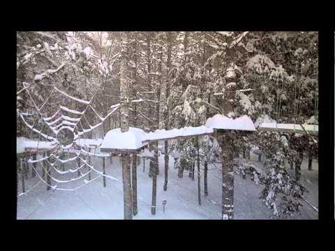 Photos of Snow Storm around Annapolis Valley and Masstown Area, Nova Scotia