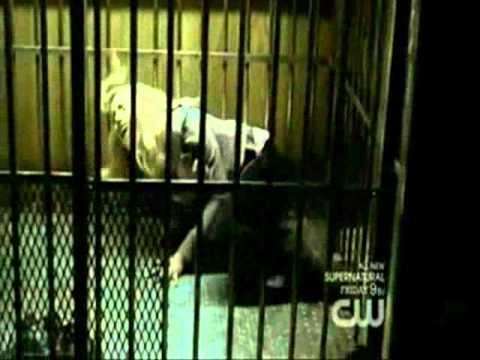 The Vampire Diaries season 2 episode 13 Daddy issues recap.wmv