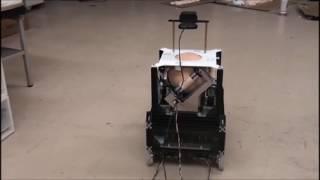 発掘!イグ・ノーベル賞(1)八戸工大−アリが操縦するロボ(動画あり)