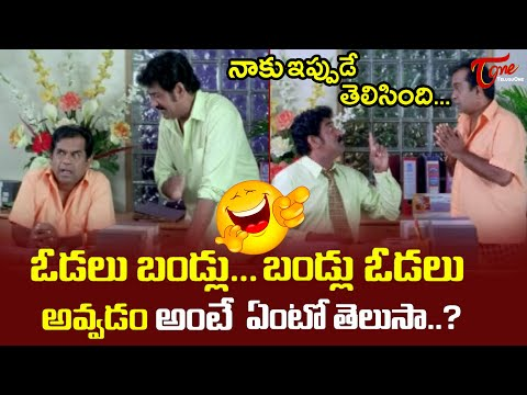 Brahmanandam And Raghu Babu Best Comedy Scenes | Telugu Comedy Videos | TeluguOne