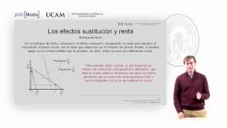 Microeconomía I - La Teoría De La Demanda (5) - Alfonso Rosa García