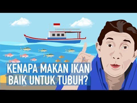 Kenapa Makan Ikan Baik untuk Tubuh?
