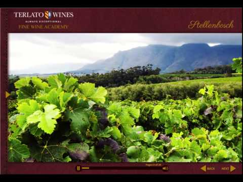 Discover South African Wines - Wines Education