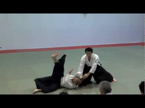 Nakamura Shihan Aikido techniques 2