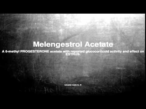 Medical vocabulary: What does Melengestrol Acetate mean